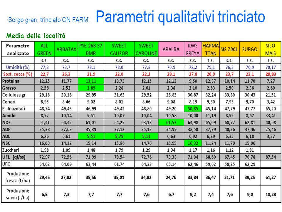 Sorgo gran. trinciato ON FARM: Parametri qualitativi trinciato