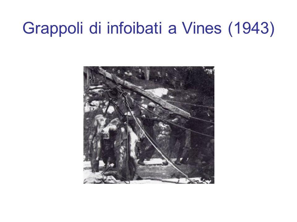 Grappoli di infoibati a Vines (1943)