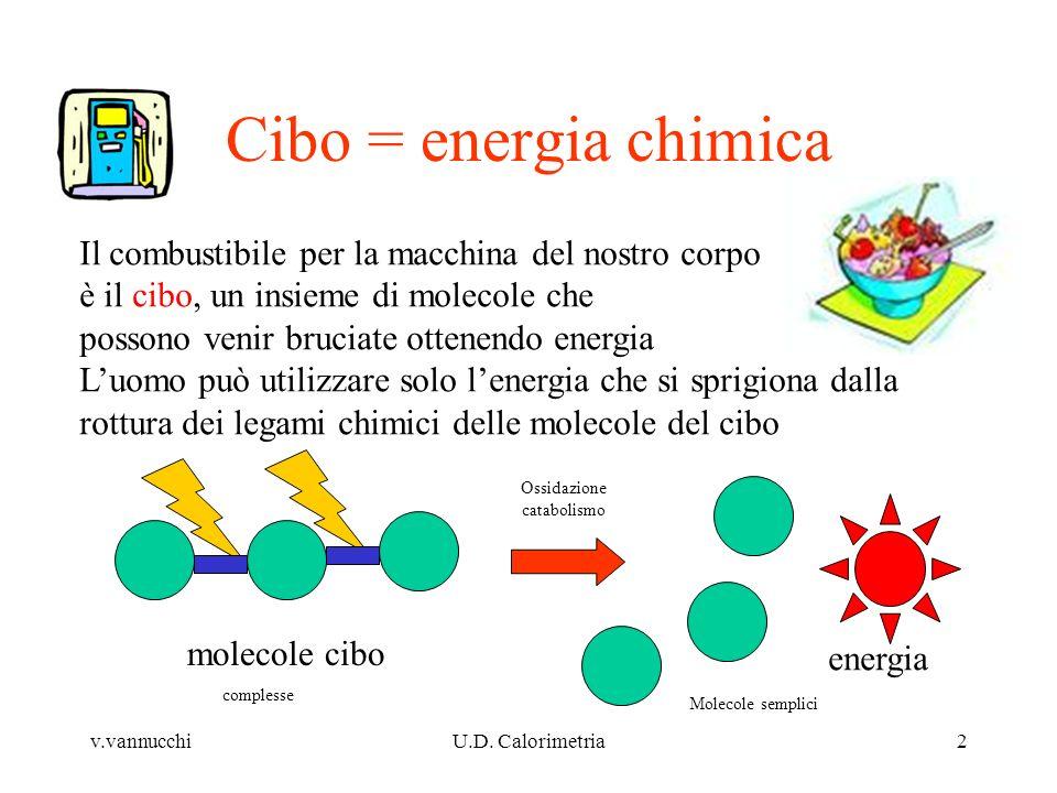 Cibo = energia chimica Il combustibile per la macchina del nostro corpo. è il cibo, un insieme di molecole che.