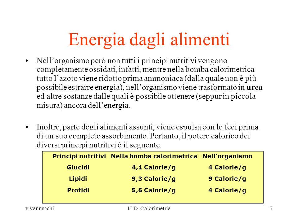 Energia dagli alimenti