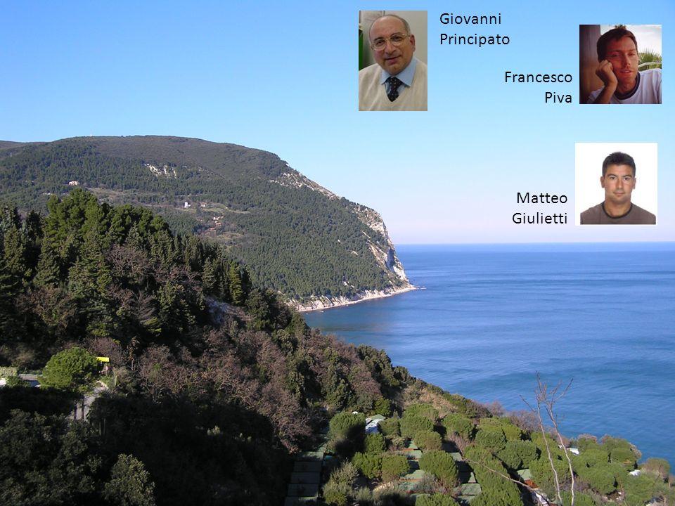 Giovanni Principato Francesco Piva Matteo Giulietti