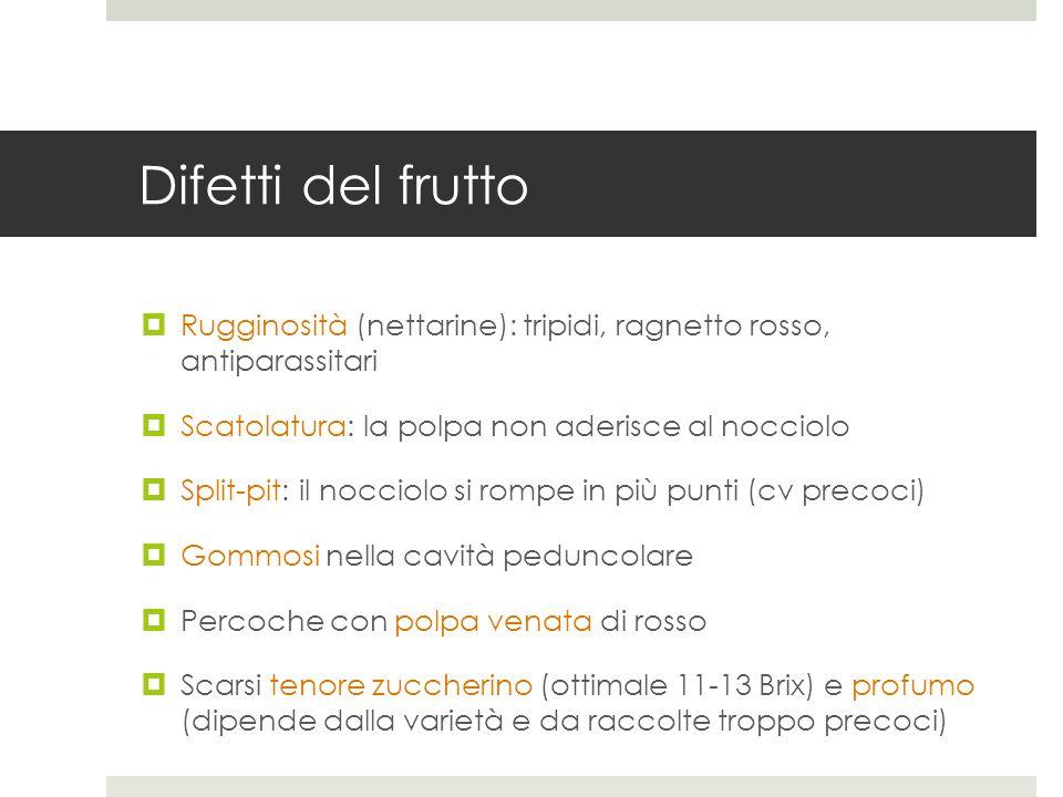 Difetti del fruttoRugginosità (nettarine): tripidi, ragnetto rosso, antiparassitari. Scatolatura: la polpa non aderisce al nocciolo.