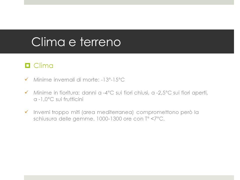 Clima e terreno Clima Minime invernali di morte: -13°-15°C