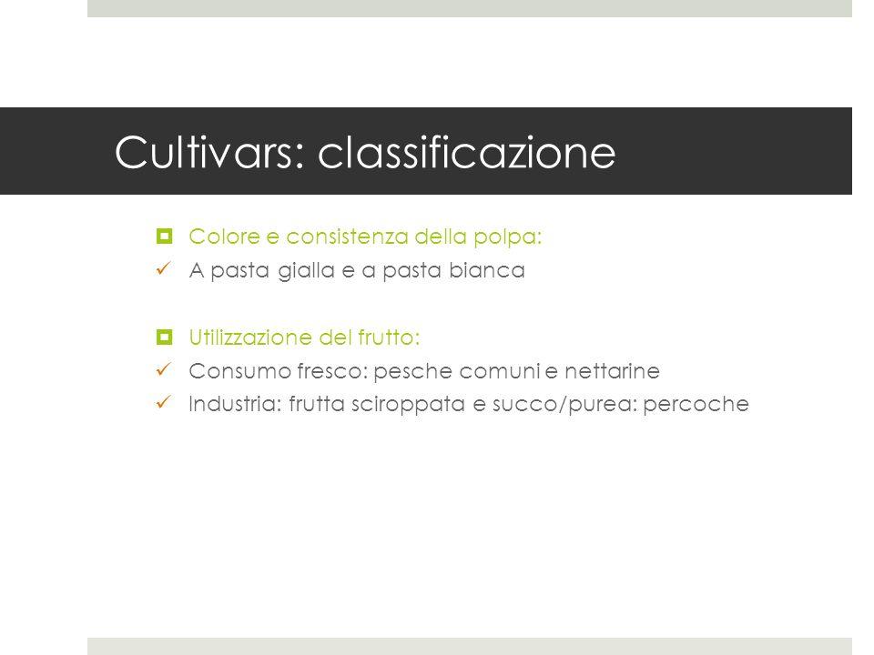 Cultivars: classificazione