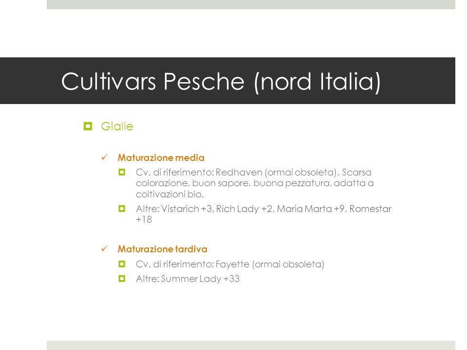 Cultivars Pesche (nord Italia)