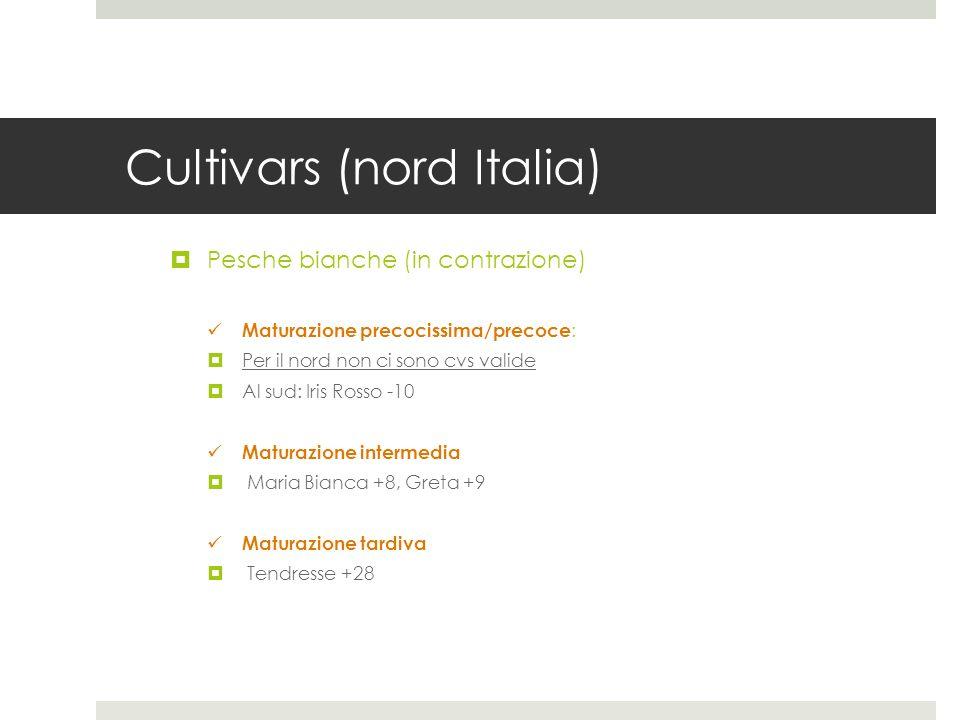 Cultivars (nord Italia)