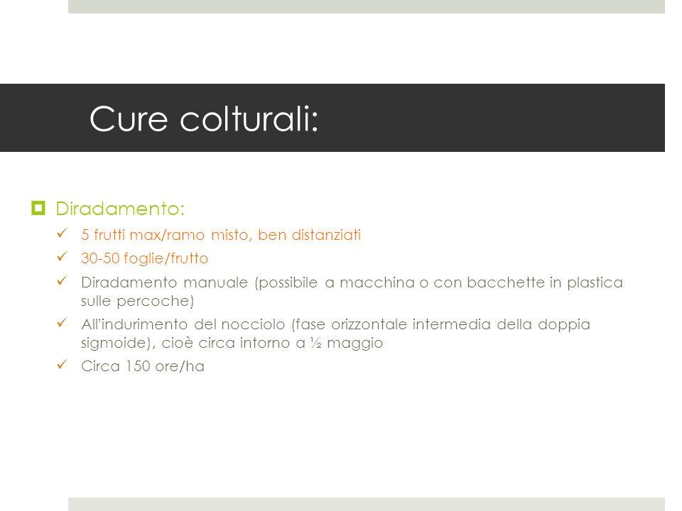 Cure colturali: Diradamento: 5 frutti max/ramo misto, ben distanziati