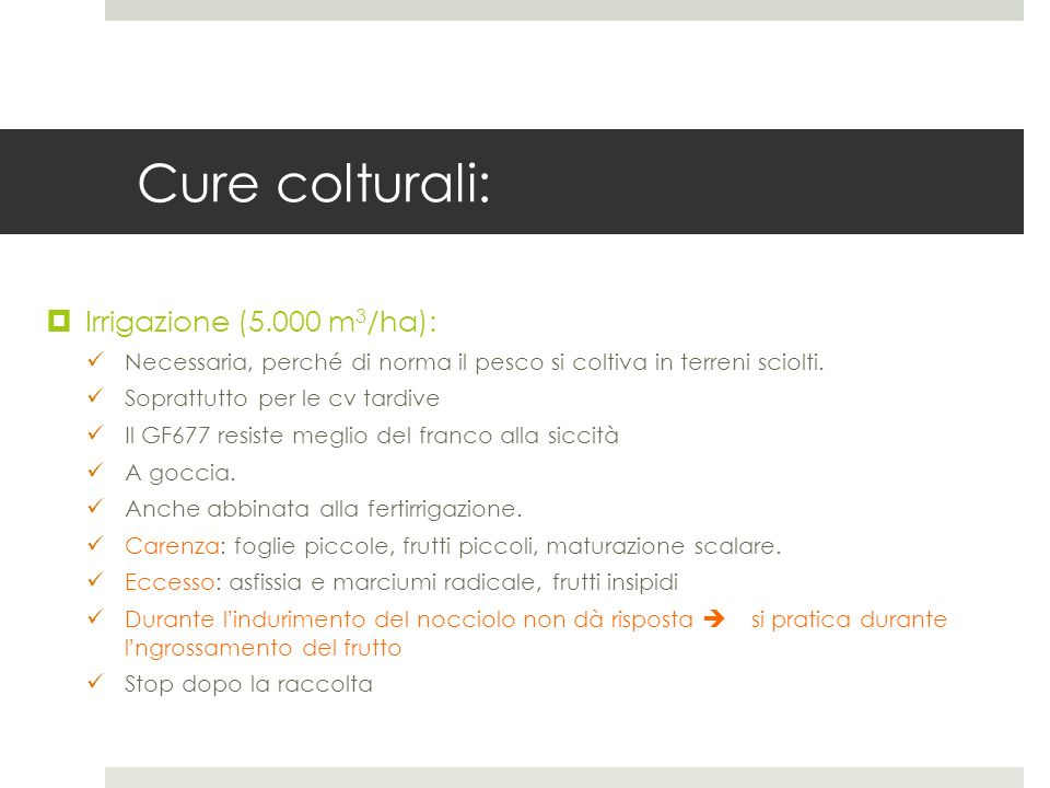 Cure colturali: Irrigazione (5.000 m3/ha):