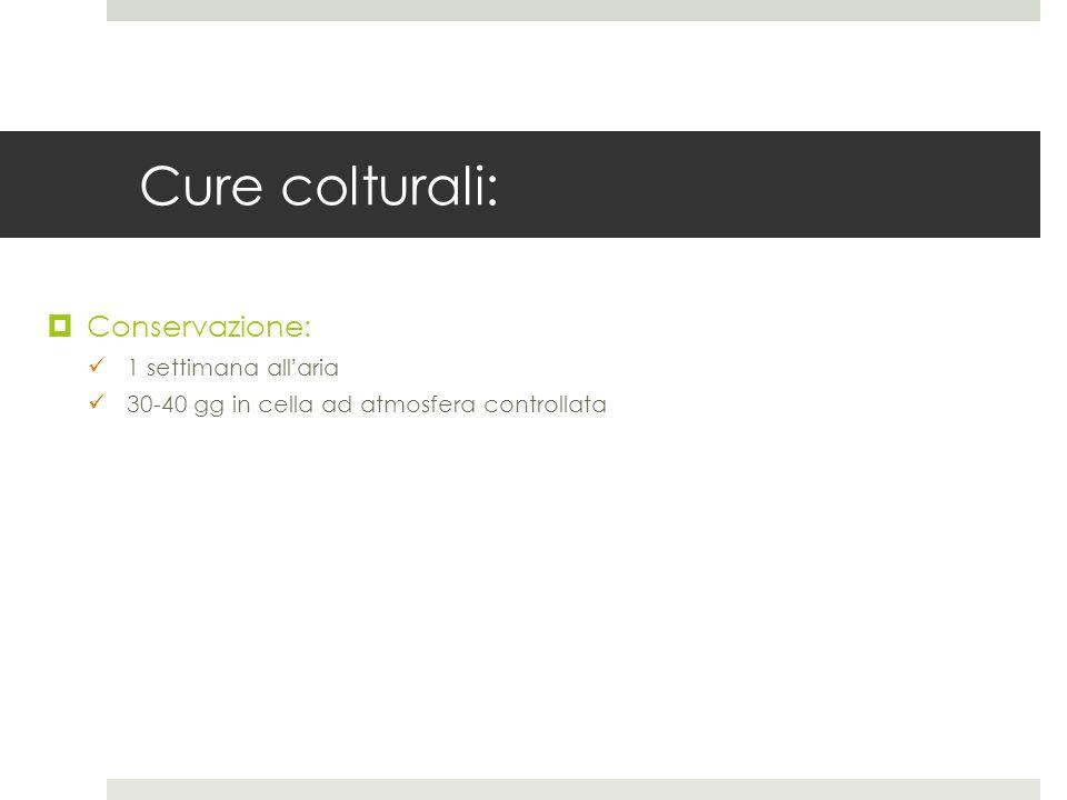 Cure colturali: Conservazione: 1 settimana all'aria