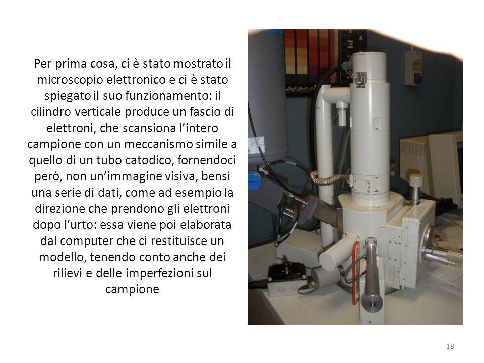 Per prima cosa, ci è stato mostrato il microscopio elettronico e ci è stato spiegato il suo funzionamento: il cilindro verticale produce un fascio di elettroni, che scansiona l'intero campione con un meccanismo simile a quello di un tubo catodico, fornendoci però, non un'immagine visiva, bensì una serie di dati, come ad esempio la direzione che prendono gli elettroni dopo l'urto: essa viene poi elaborata dal computer che ci restituisce un modello, tenendo conto anche dei rilievi e delle imperfezioni sul campione