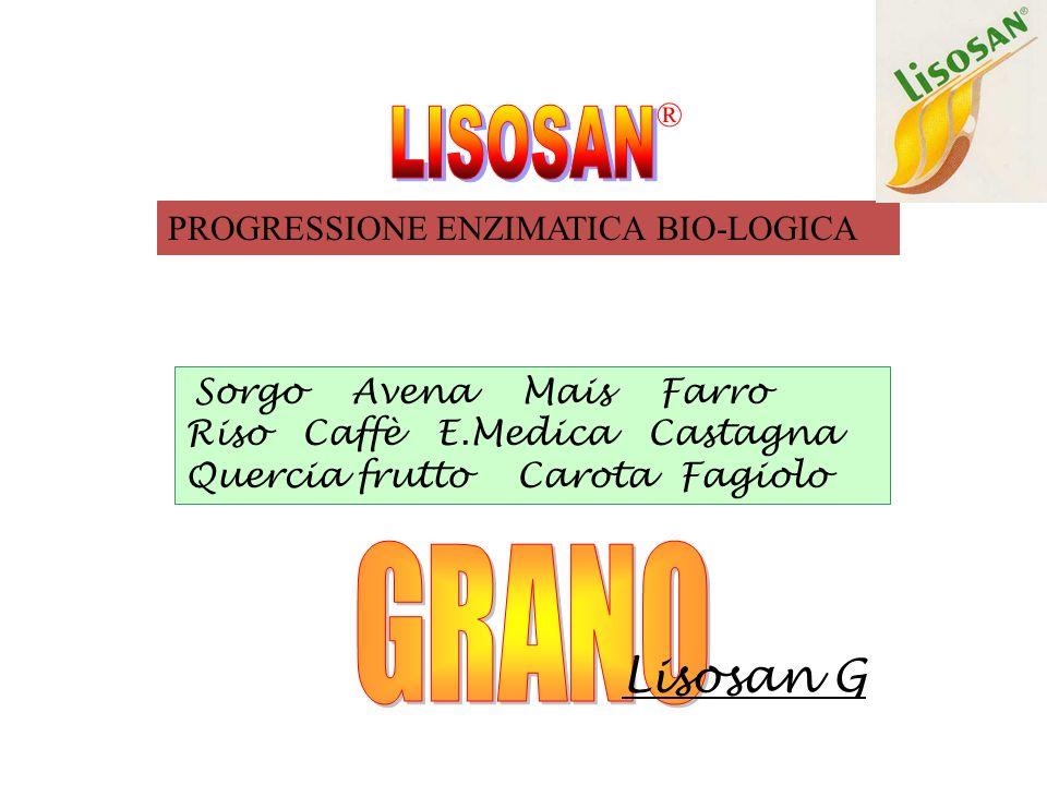 LISOSAN GRANO Lisosan G ® PROGRESSIONE ENZIMATICA BIO-LOGICA