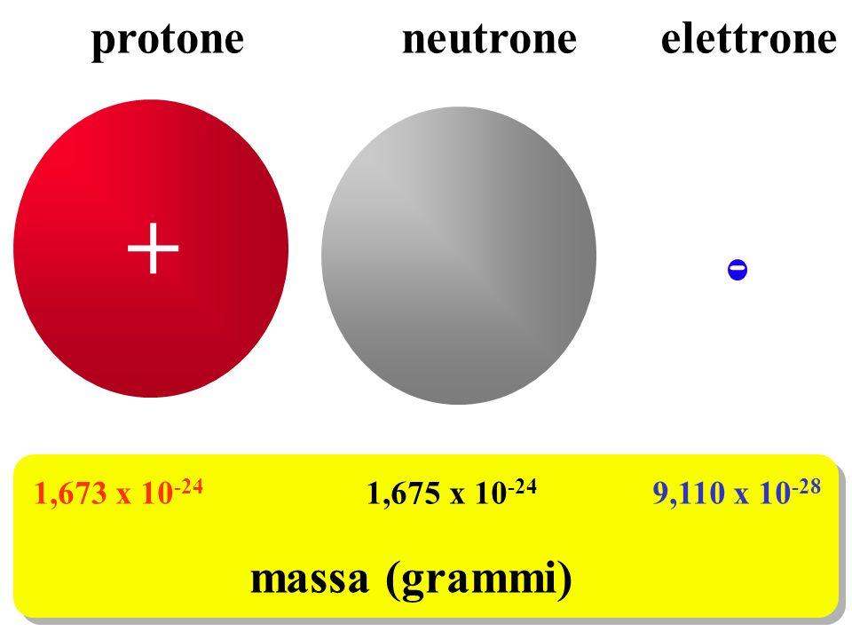 + protone neutrone elettrone massa (grammi) -