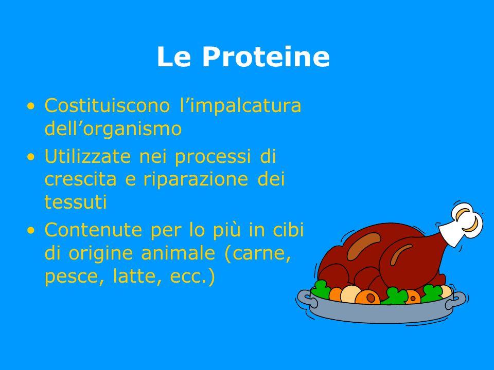 Le Proteine Costituiscono l'impalcatura dell'organismo