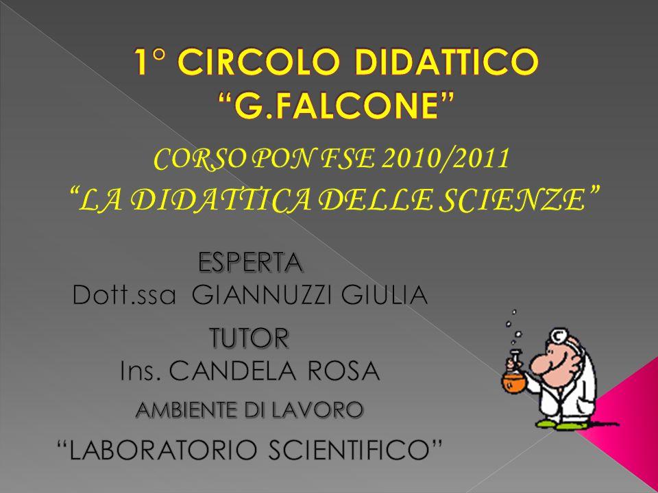 1° CIRCOLO DIDATTICO G.FALCONE