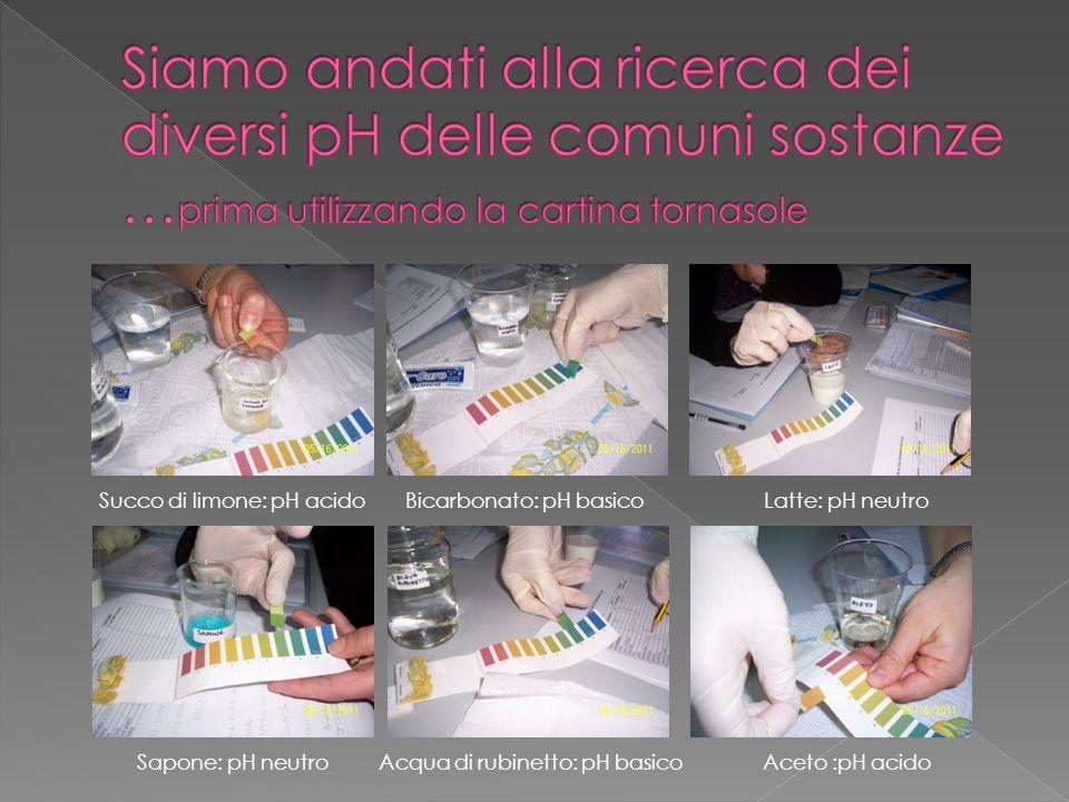 Siamo andati alla ricerca dei diversi pH delle comuni sostanze …prima utilizzando la cartina tornasole