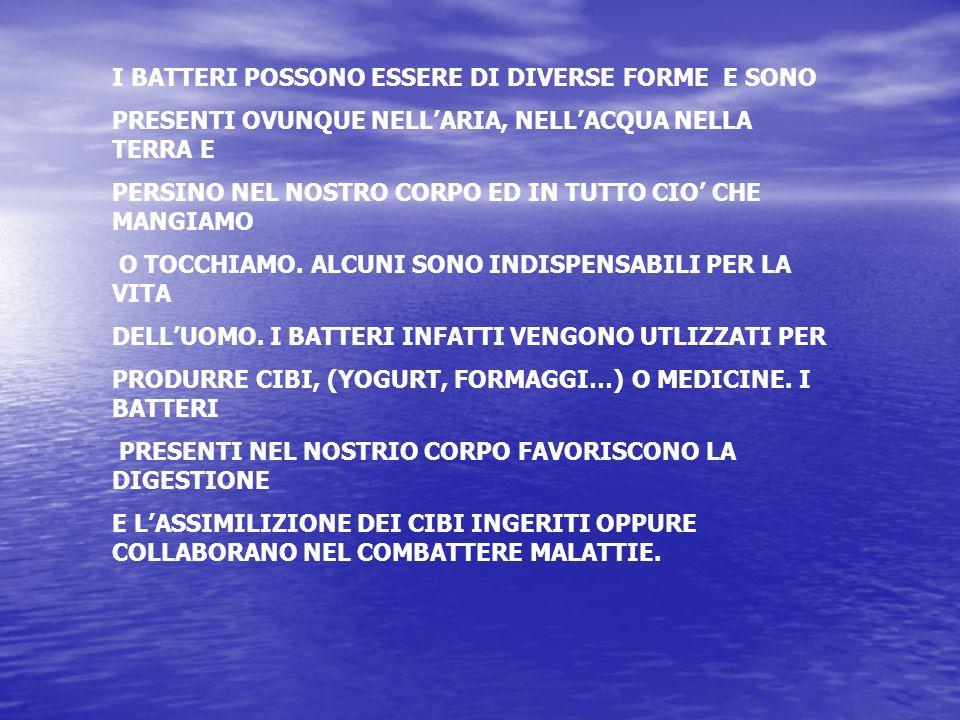 I BATTERI POSSONO ESSERE DI DIVERSE FORME E SONO