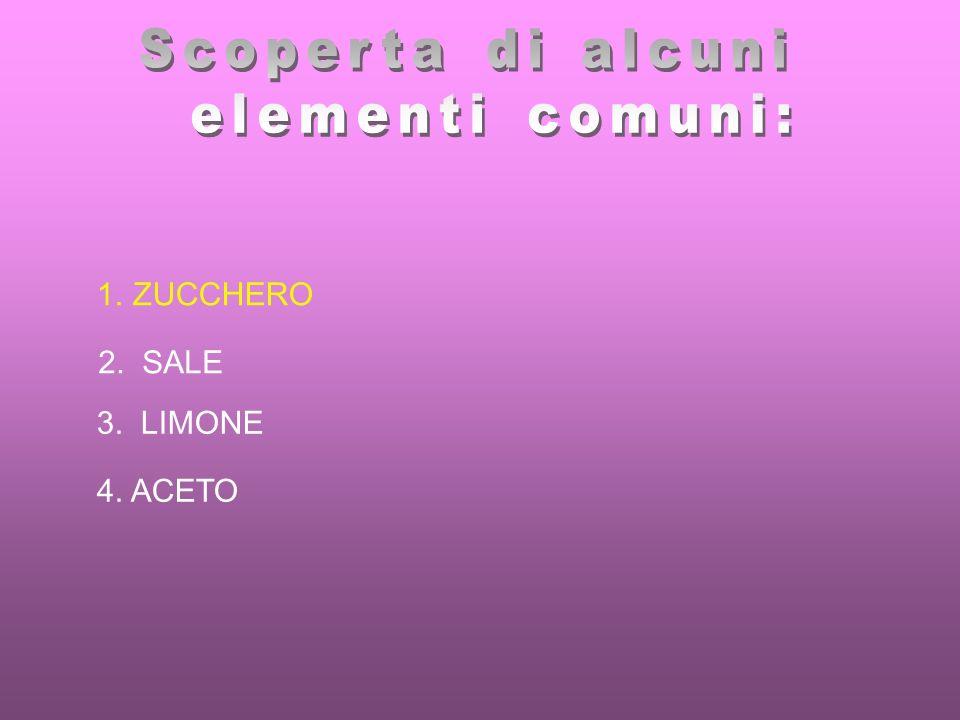 Scoperta di alcuni elementi comuni: ZUCCHERO 2. SALE 3. LIMONE 4. ACETO