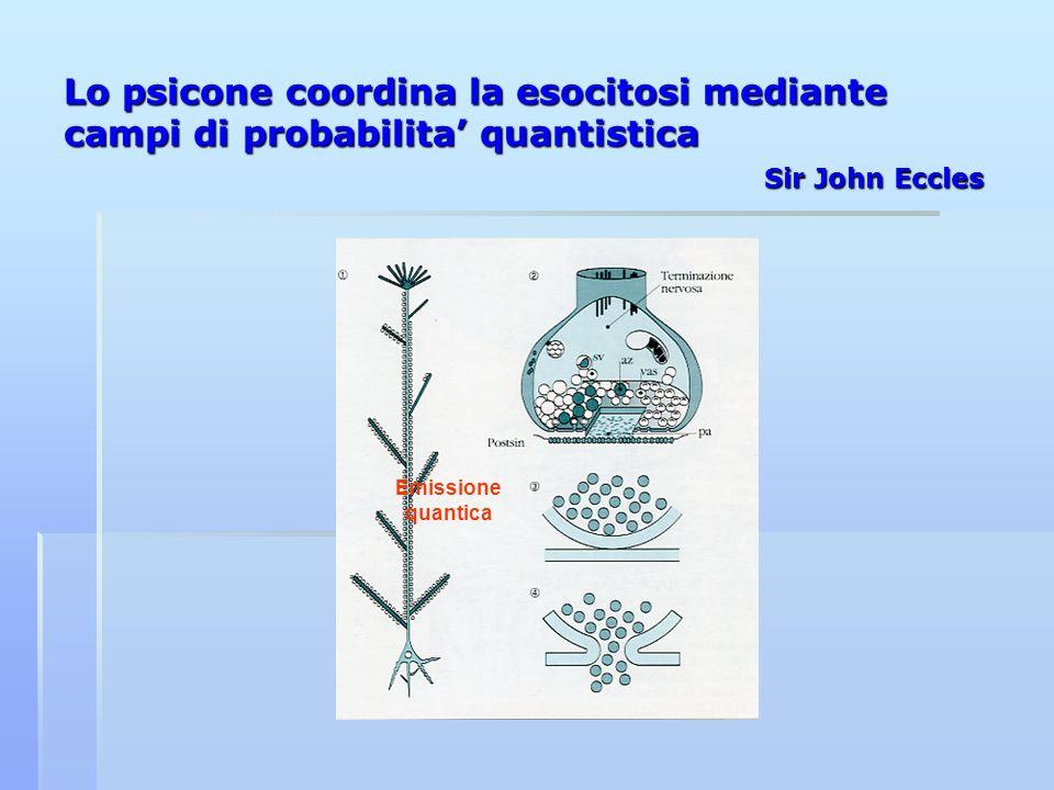 Lo psicone coordina la esocitosi mediante campi di probabilita' quantistica Sir John Eccles