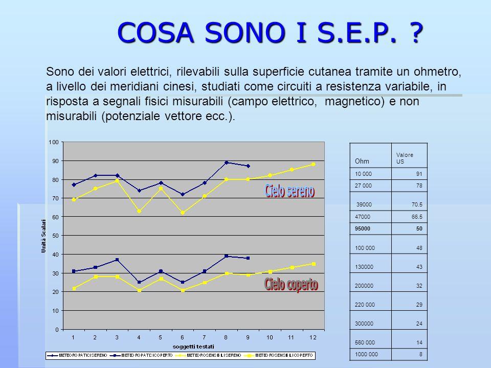 COSA SONO I S.E.P.