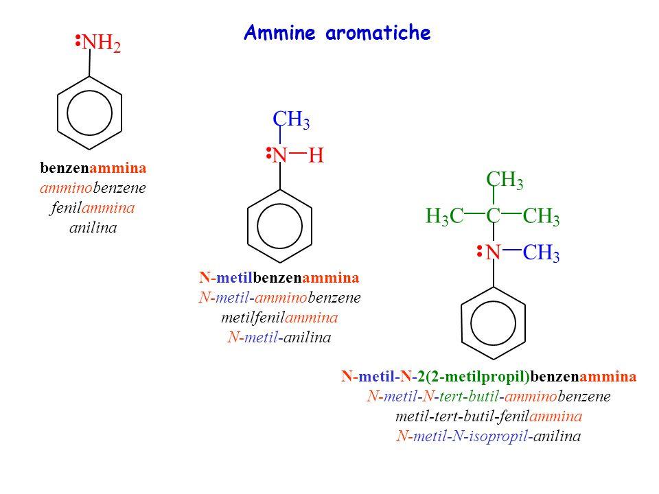 N H N H C N C H Ammine aromatiche 2 3 benzenammina amminobenzene