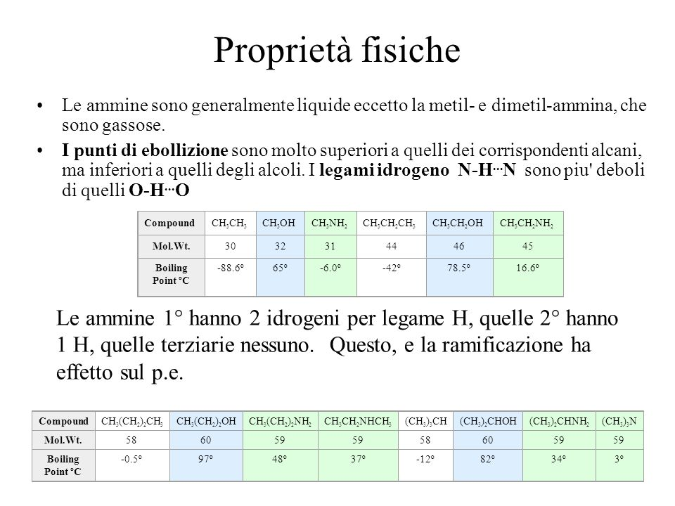 Proprietà fisiche Le ammine sono generalmente liquide eccetto la metil- e dimetil-ammina, che sono gassose.