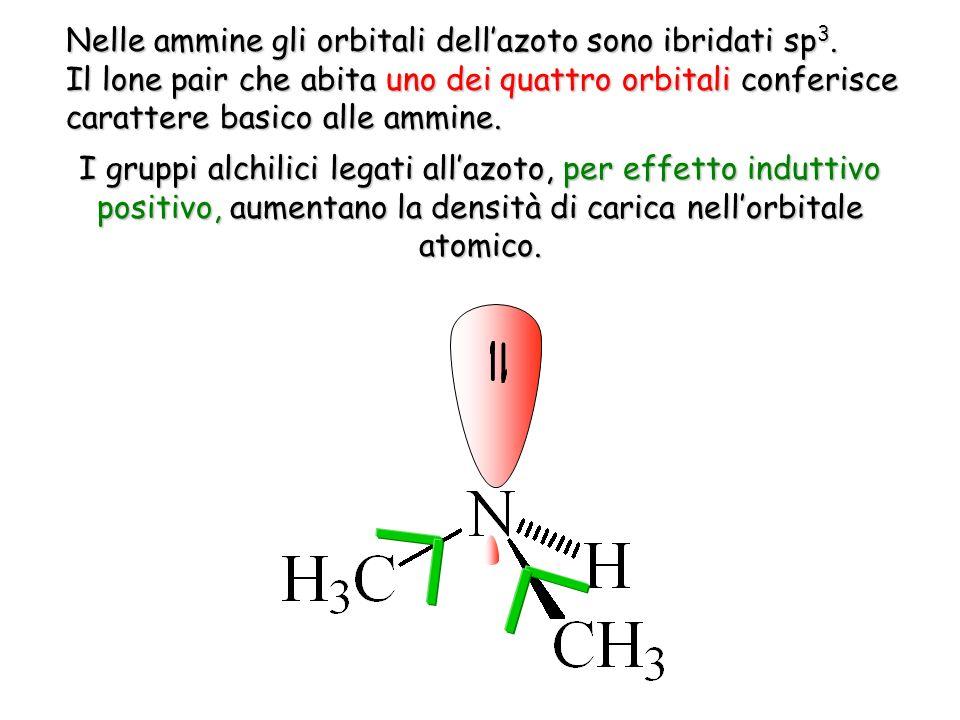 Nelle ammine gli orbitali dell'azoto sono ibridati sp3.
