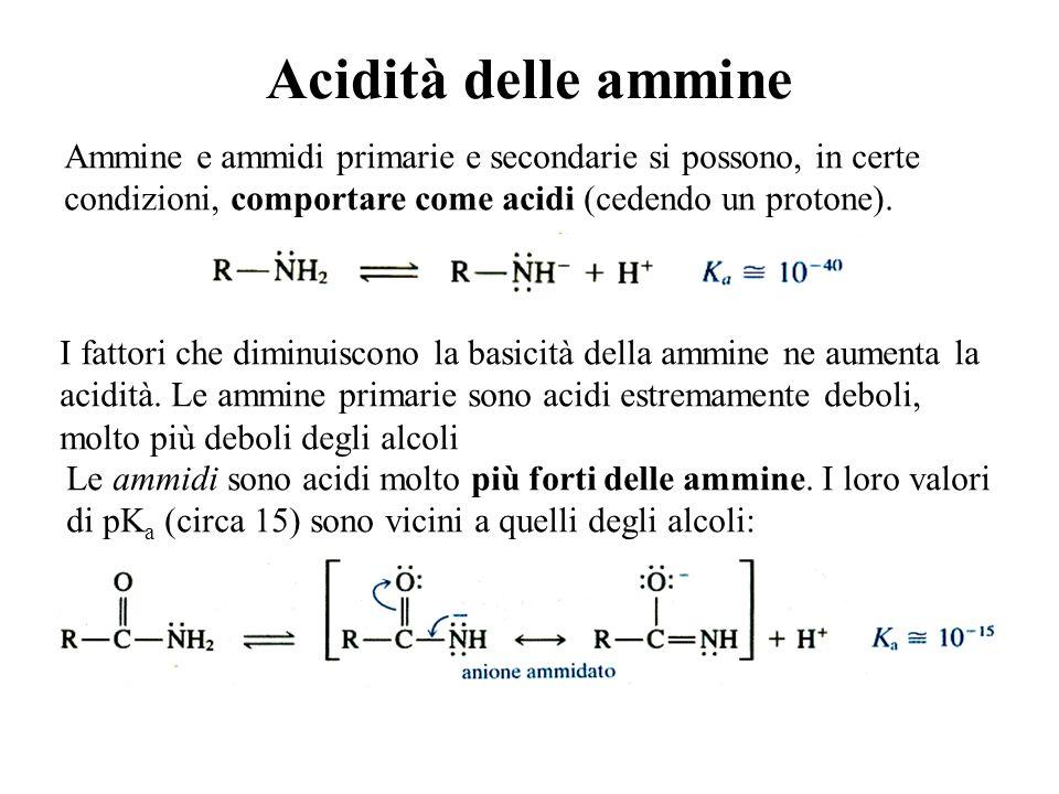 Acidità delle ammine Ammine e ammidi primarie e secondarie si possono, in certe condizioni, comportare come acidi (cedendo un protone).
