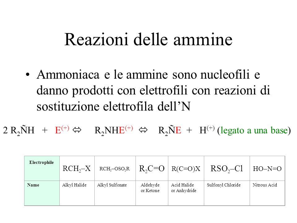 Reazioni delle ammine Ammoniaca e le ammine sono nucleofili e danno prodotti con elettrofili con reazioni di sostituzione elettrofila dell'N.