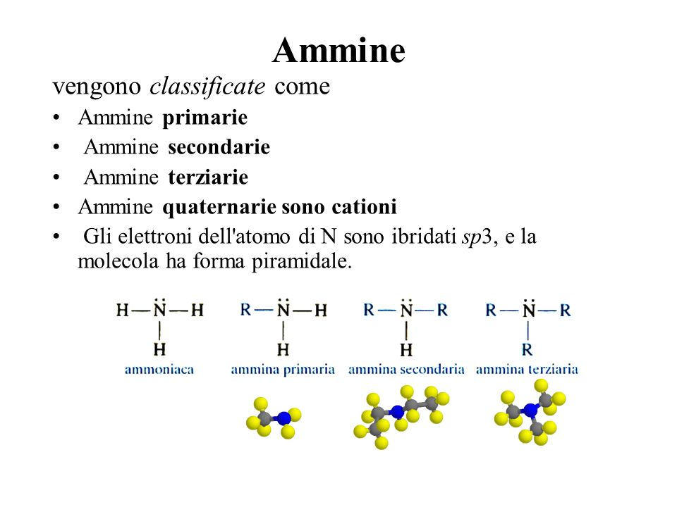 Ammine vengono classificate come Ammine primarie Ammine secondarie