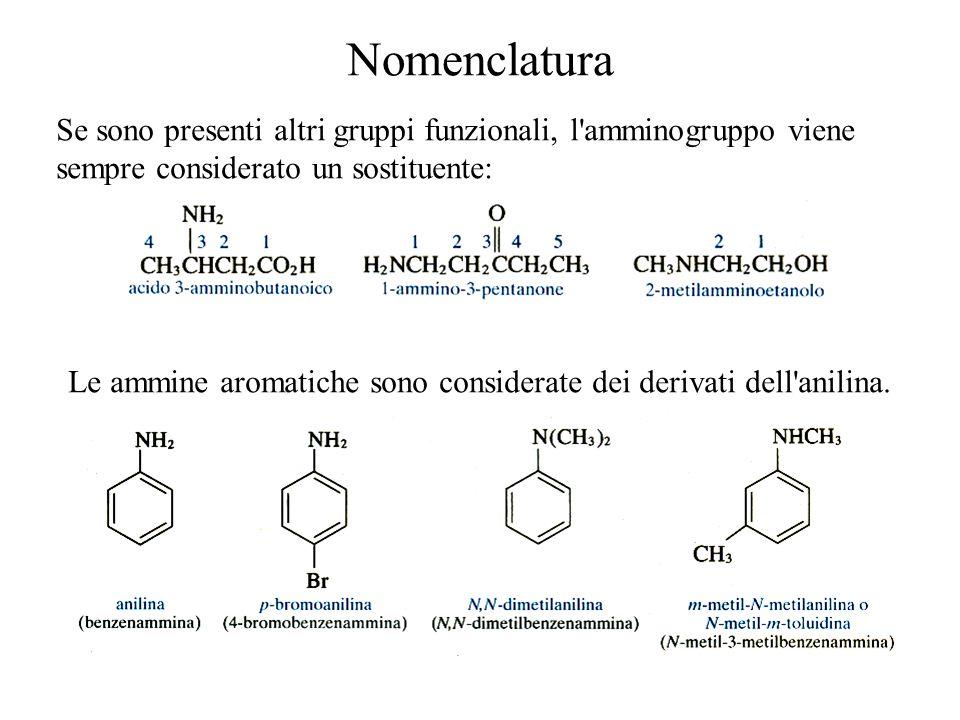 Nomenclatura Se sono presenti altri gruppi funzionali, l amminogruppo viene sempre considerato un sostituente: