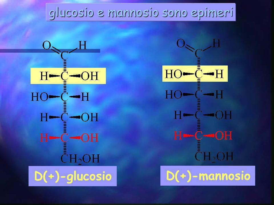 glucosio e mannosio sono epimeri