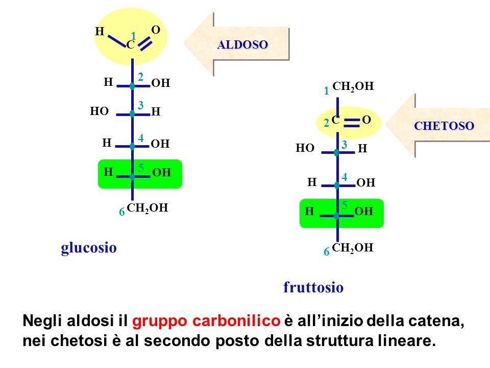 Negli aldosi il gruppo carbonilico è all'inizio della catena,