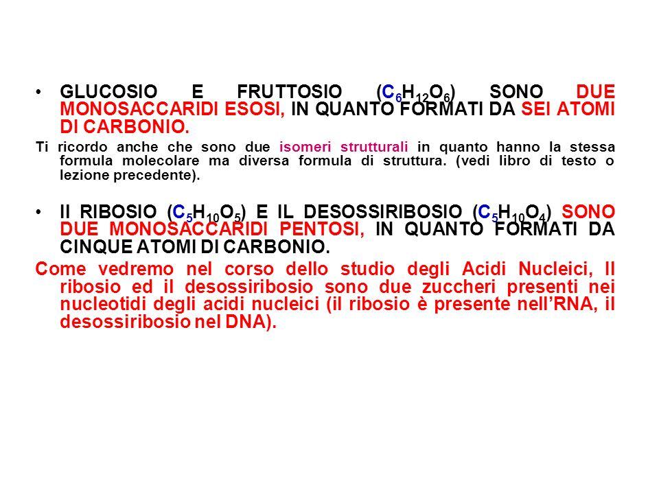 GLUCOSIO E FRUTTOSIO (C6H12O6) SONO DUE MONOSACCARIDI ESOSI, IN QUANTO FORMATI DA SEI ATOMI DI CARBONIO.