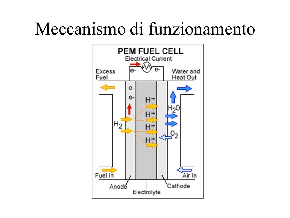 Meccanismo di funzionamento