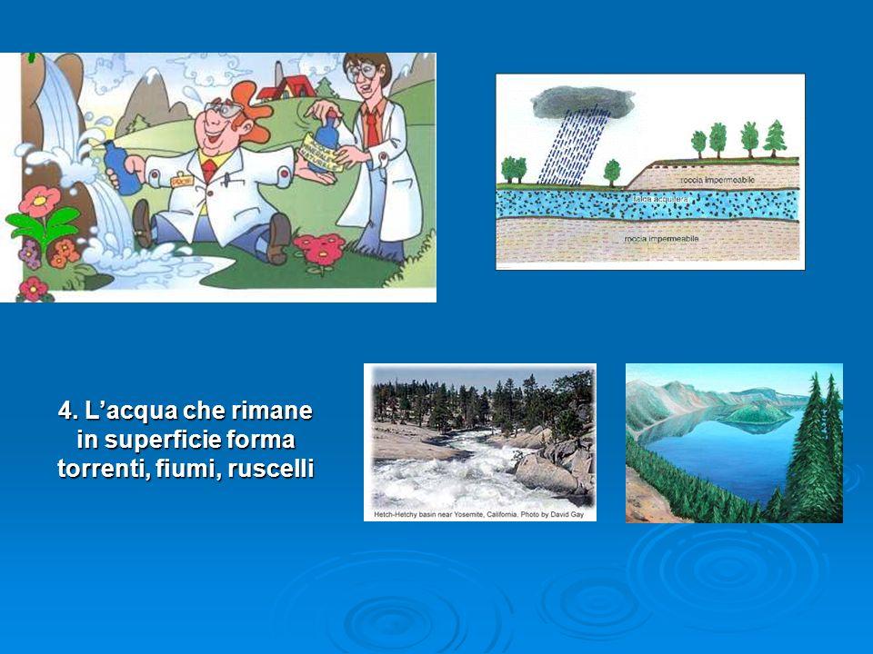 4. L'acqua che rimane in superficie forma torrenti, fiumi, ruscelli