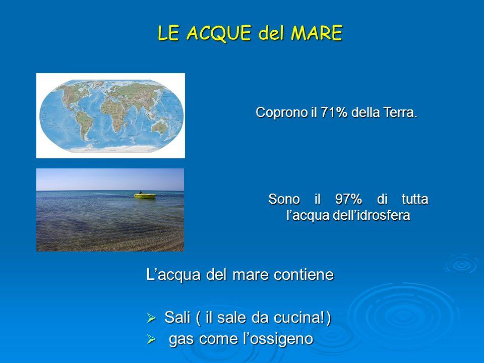 Coprono il 71% della Terra.