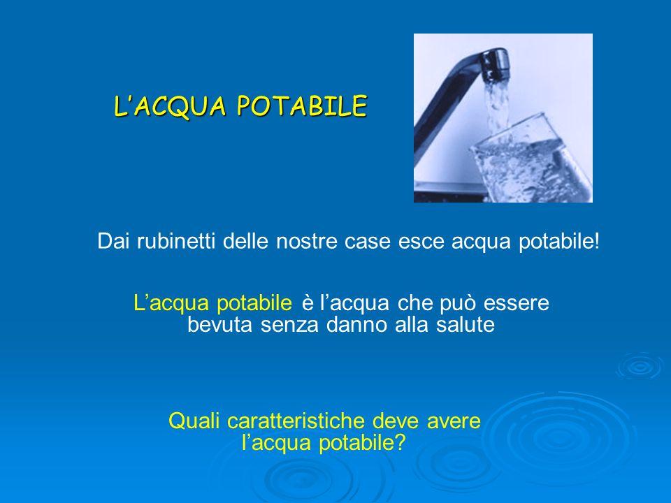 L'ACQUA POTABILE Dai rubinetti delle nostre case esce acqua potabile!