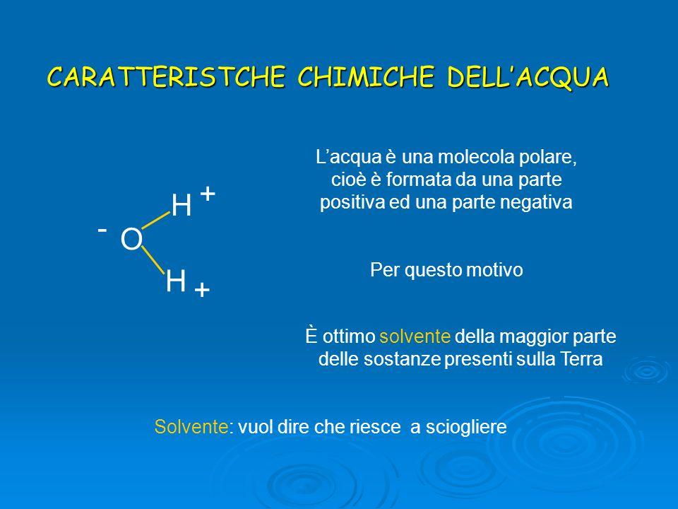 H - O + CARATTERISTCHE CHIMICHE DELL'ACQUA