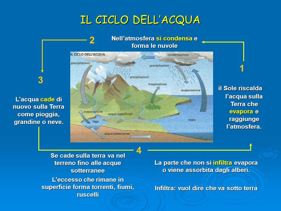 IL CICLO DELL'ACQUA 2. Nell'atmosfera si condensa e forma le nuvole. 1. 3.