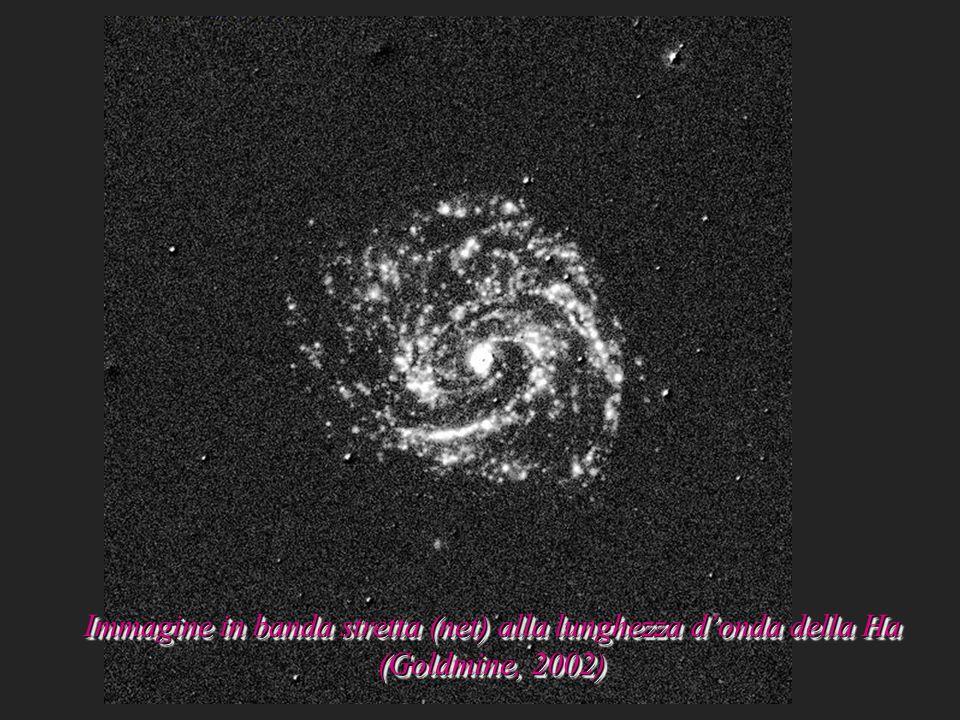Immagine in banda stretta (net) alla lunghezza d'onda della Ha (Goldmine, 2002)
