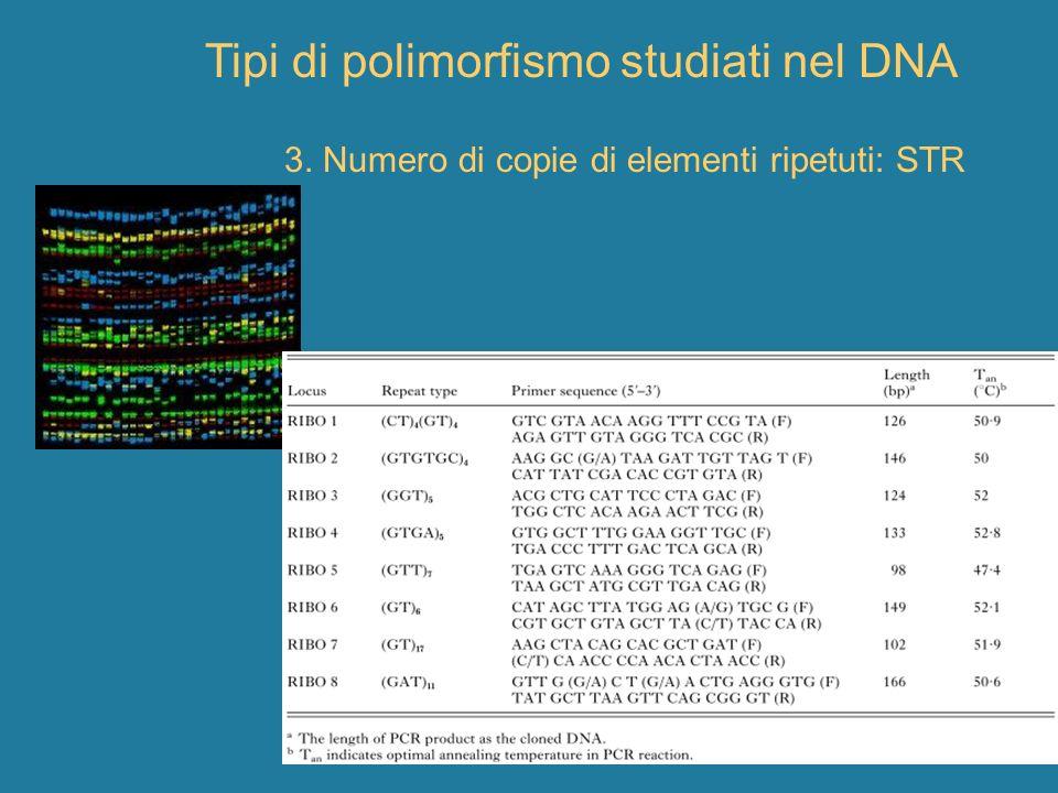 Tipi di polimorfismo studiati nel DNA