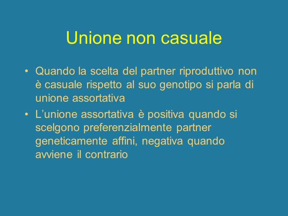 Unione non casuale Quando la scelta del partner riproduttivo non è casuale rispetto al suo genotipo si parla di unione assortativa.