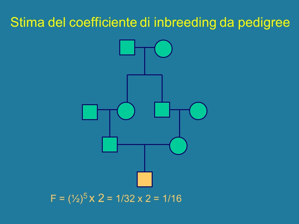 Stima del coefficiente di inbreeding da pedigree