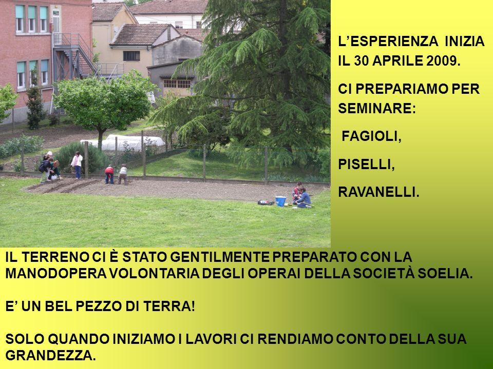 L'ESPERIENZA INIZIA IL 30 APRILE 2009.