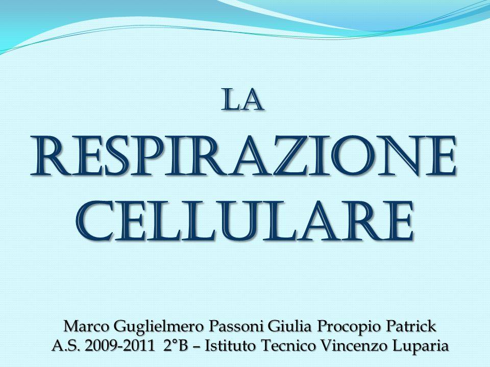 LA RESPIRAZIONE CELLULARE
