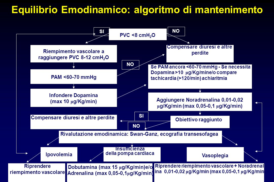 Equilibrio Emodinamico: algoritmo di mantenimento