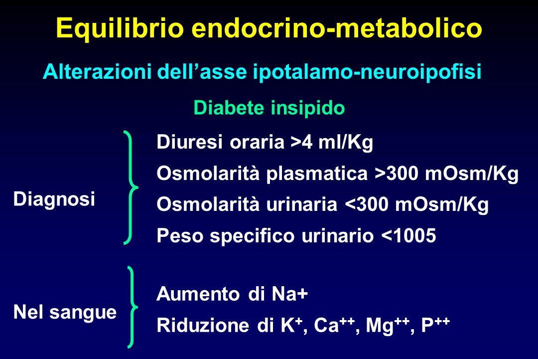 Equilibrio endocrino-metabolico