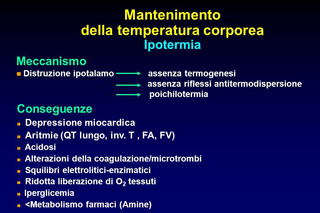 Mantenimento della temperatura corporea Ipotermia