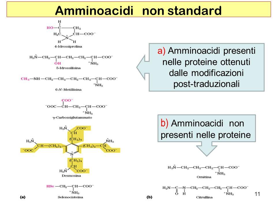 Amminoacidi non standard
