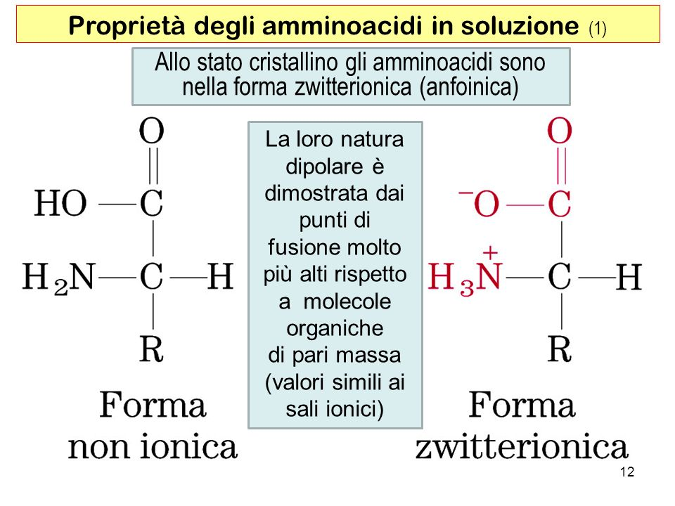 Proprietà degli amminoacidi in soluzione (1)